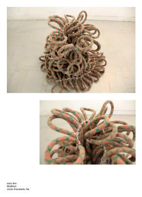 Sculpture en noeuds